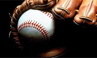 Baseball Softball Team Insurance