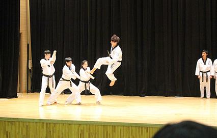 Mixed Martial Arts Insurance